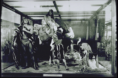 Black and white photograph of an diorama exhibit created by Homles to showcase Tehuelehe life