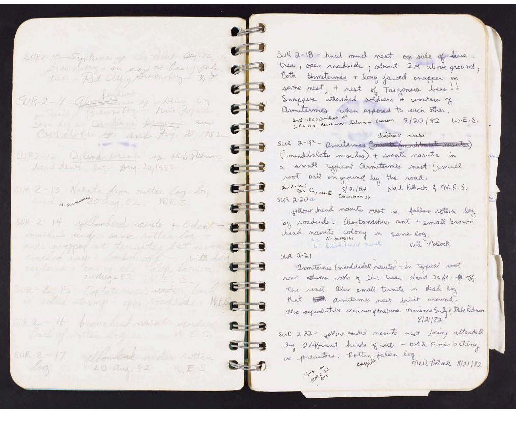 Handwritten page from Collins' field book. Only the left page is filled out.