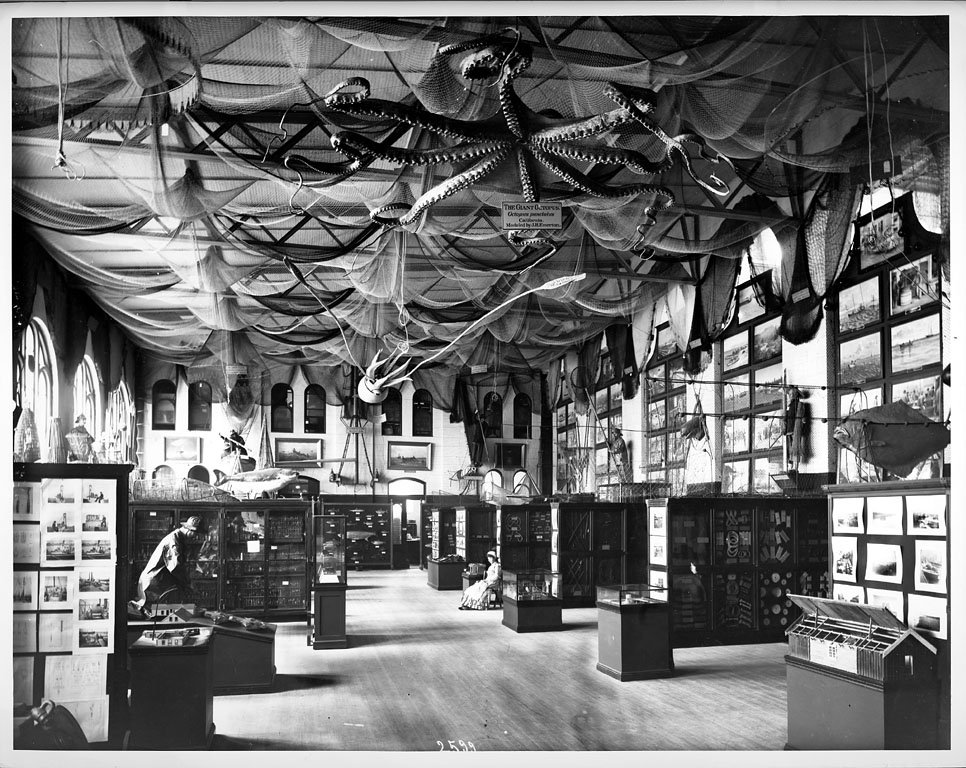 Fisheries Exhibit in the U.S. National Museum, 1886, by Thomas Smillie, 2002-11551.