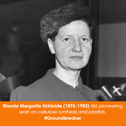 Wanda Margarite Kirkbride (1895-1983) did pioneering work on cellulose synthesis and plastids.