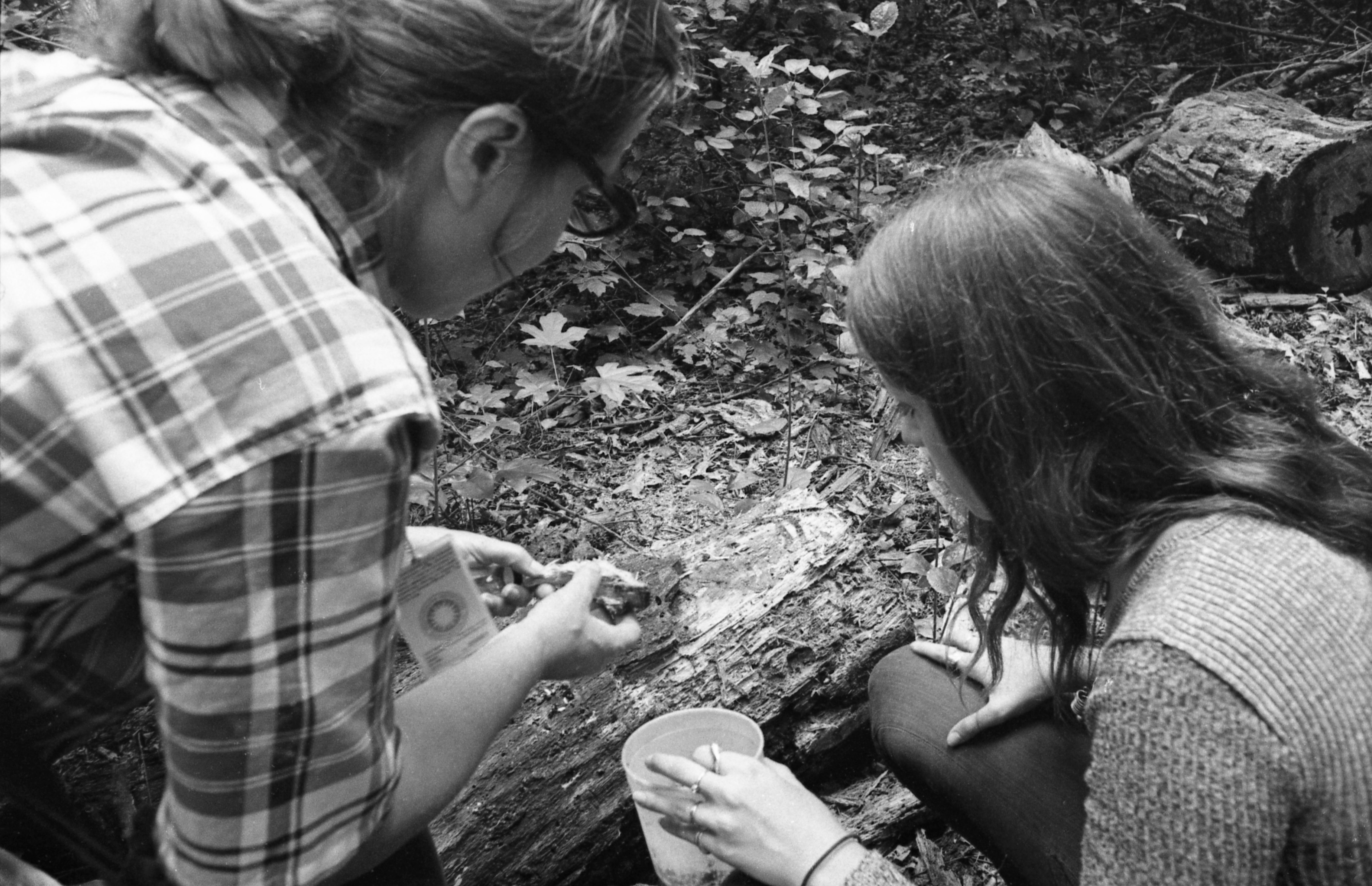 Gathering specimens in the field for the insect zoo at the National Museum of Natural History, August 8, 1972, by Harry Neufeld.