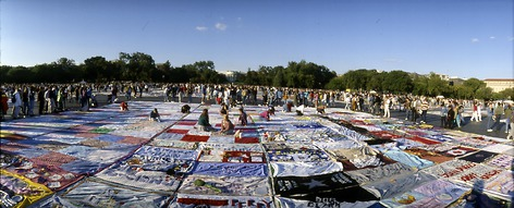 Quilt panels surrounded by crowd of people with the Capitol Building in the distance.