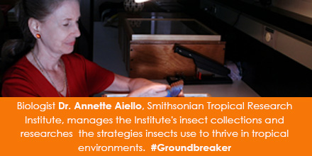 Biologist Dr. Annette Aiello, Smithsonian Tropical Research Institute, manages the Institute's insec