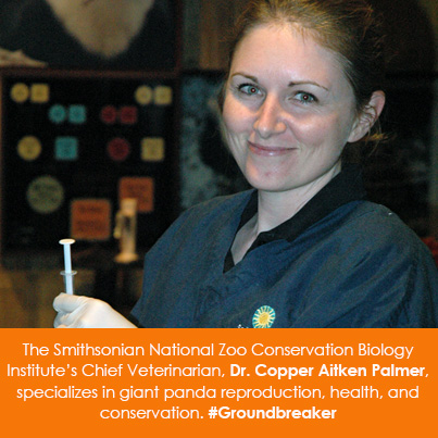The Smithsonian National Zoo, Conservation Biology Institute's Chief Veterinarian, Dr. Copper Aitken