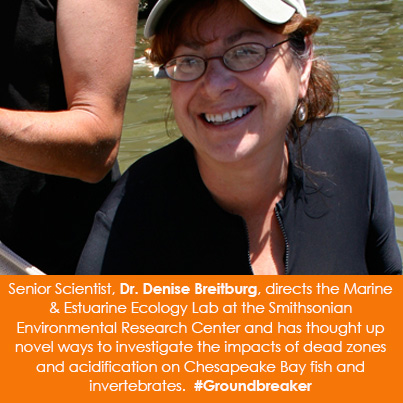 Senior Scientist, Dr. Denise Breitburg, directs the Marine & Estuarine Ecology Lab at the Smithsonia