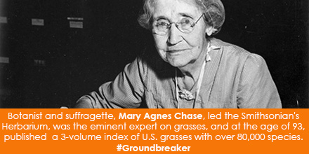Botanist and suffragette, Mary Agnes Chase, led the Smithsonian's Herbarium, was the eminent expert