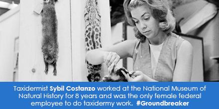 Taxidermist Sybil Costanzo