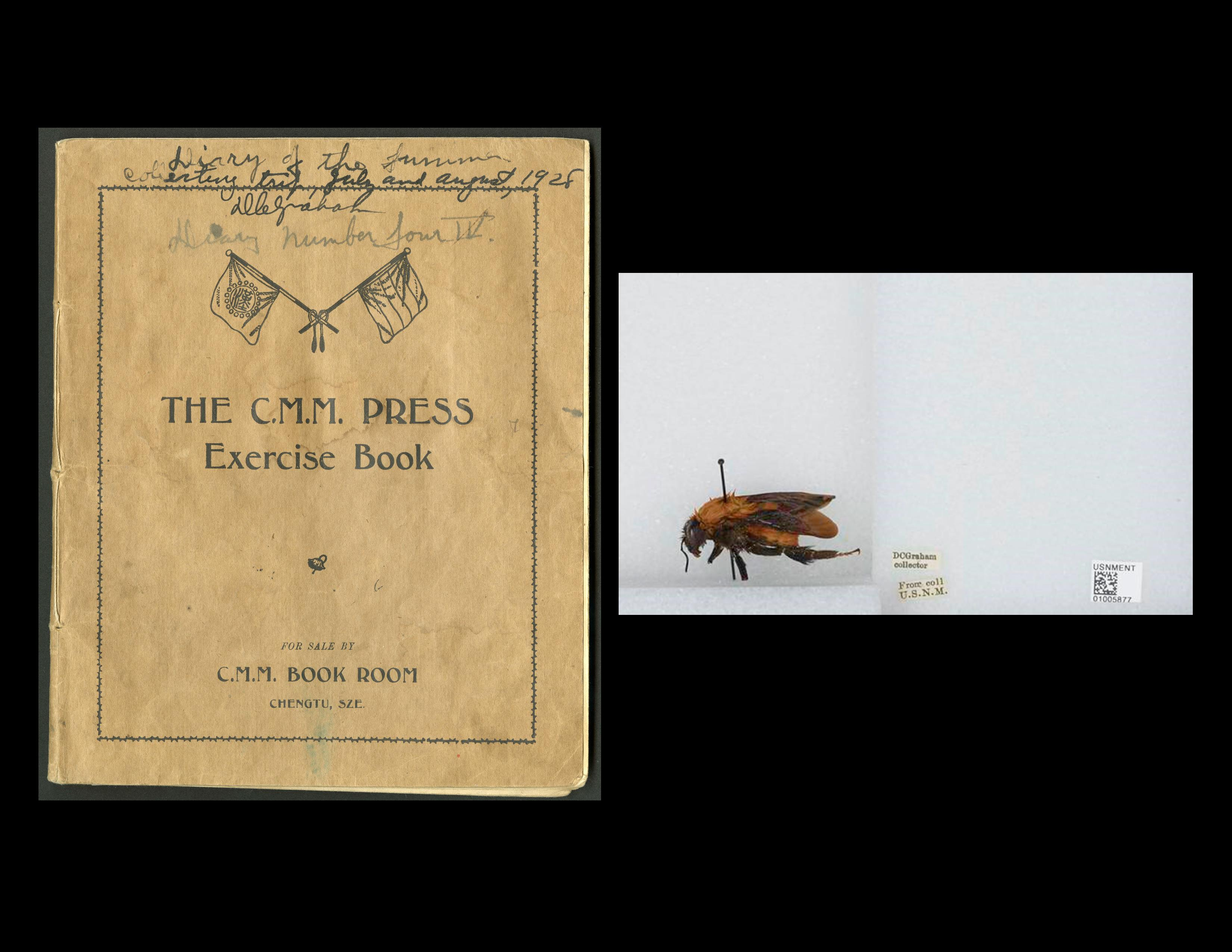 On the left: David Crockett Graham diary documenting his field work in China, Smithsonian Institutio