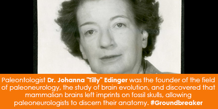 "Paleontologist Dr. Johanna ""Tilly"" Edinger was the founder of the field of paleoneurology, the study"