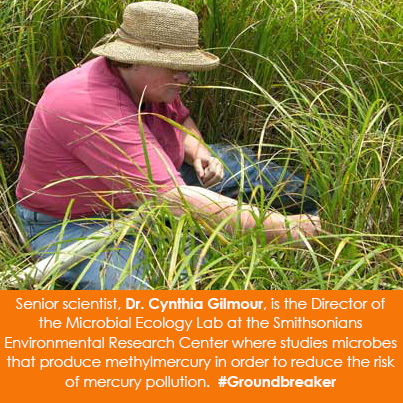 Senior scientist, Dr. Cynthia Gilmour, is the Director of the Microbial Ecology Lab at the Smithsoni