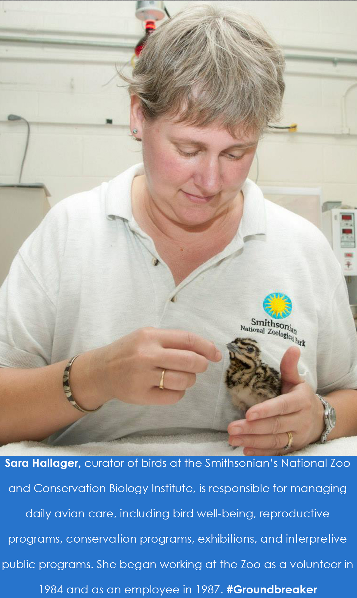 Hallager holding a kori bustard. The caption below reads: Sara Hallager, curator of birds at the Smi