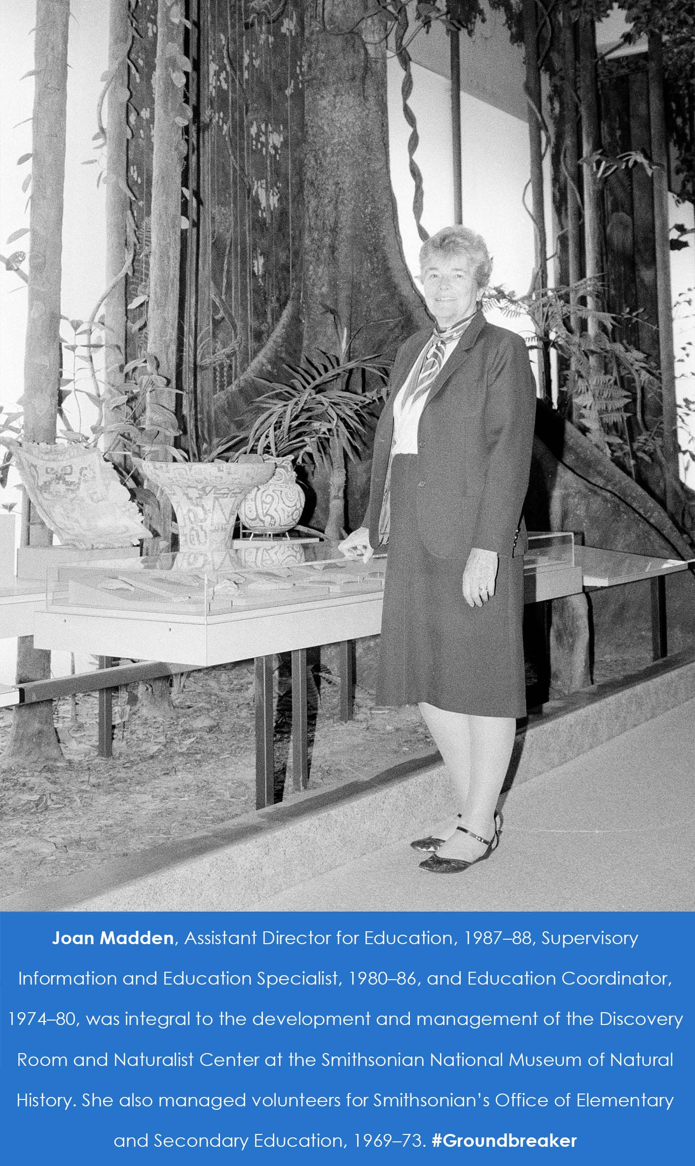 A woman stands in an exhibit space in front of pottery. A forrest or jungle scene is in the backgrou