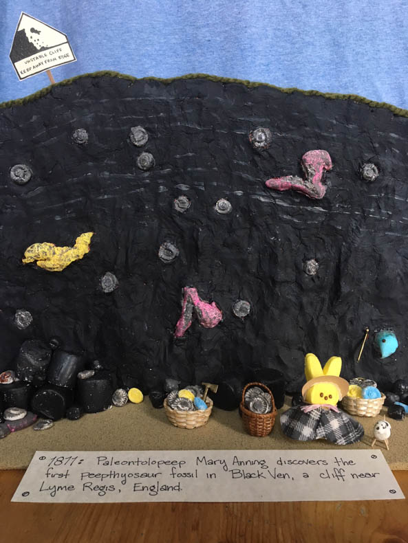 Female peep with plaid cape standing on seashore surrounded by fossils with black cliff and blue sky