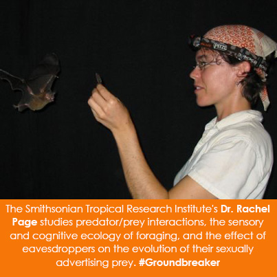 The Smithsonian Tropical Research Institute's Dr. Rachel Page studies predator/prey interactions, th