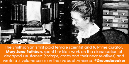 The Smithsonian's first paid female scientist and full-time curator, Mary Jane Rathbun, spent her li