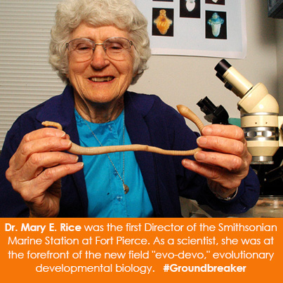 Dr. Mary E. Rice was the first Director of the Smithsonian Marine Station at Fort Pierce. As a scien