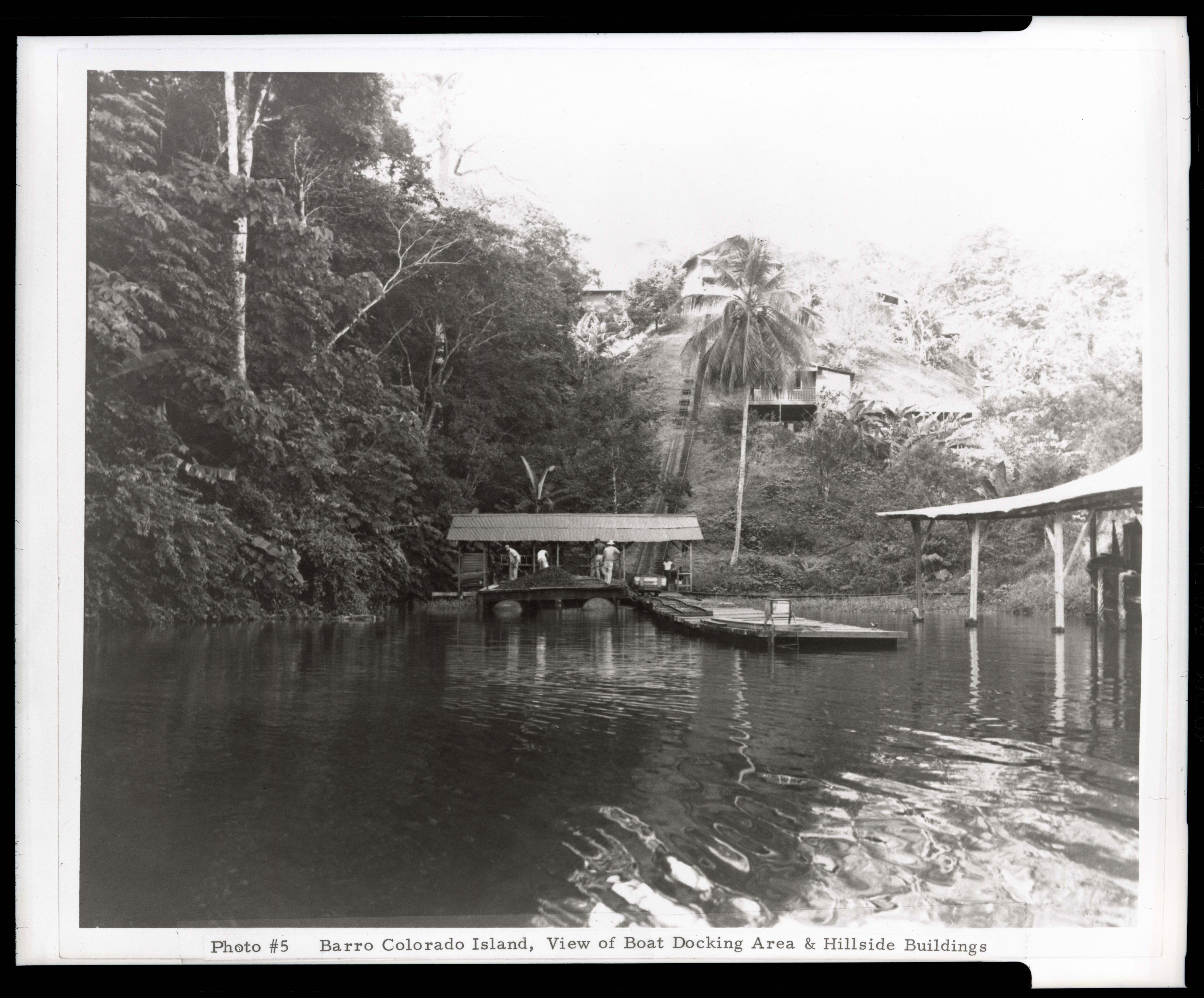 Barro Colorado Island, Smithsonian Tropical Research Institute, Panama