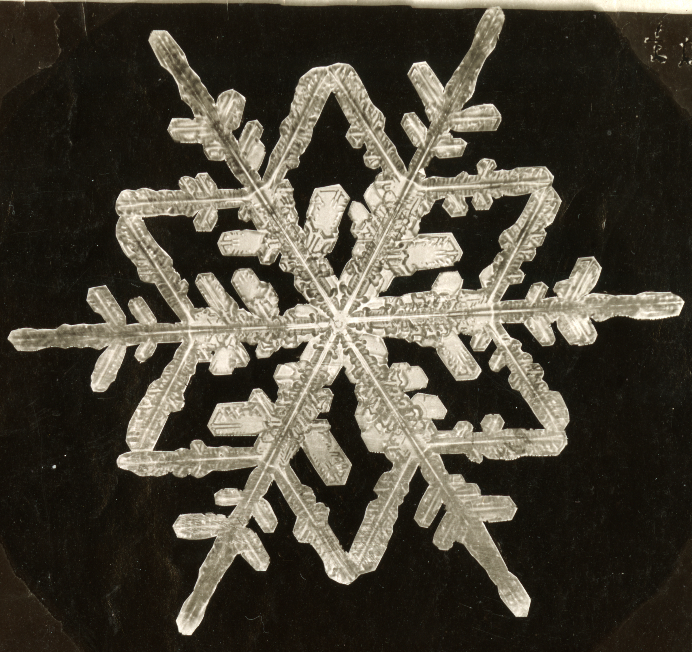 Snowflake with six, star points and six longer pointers out.