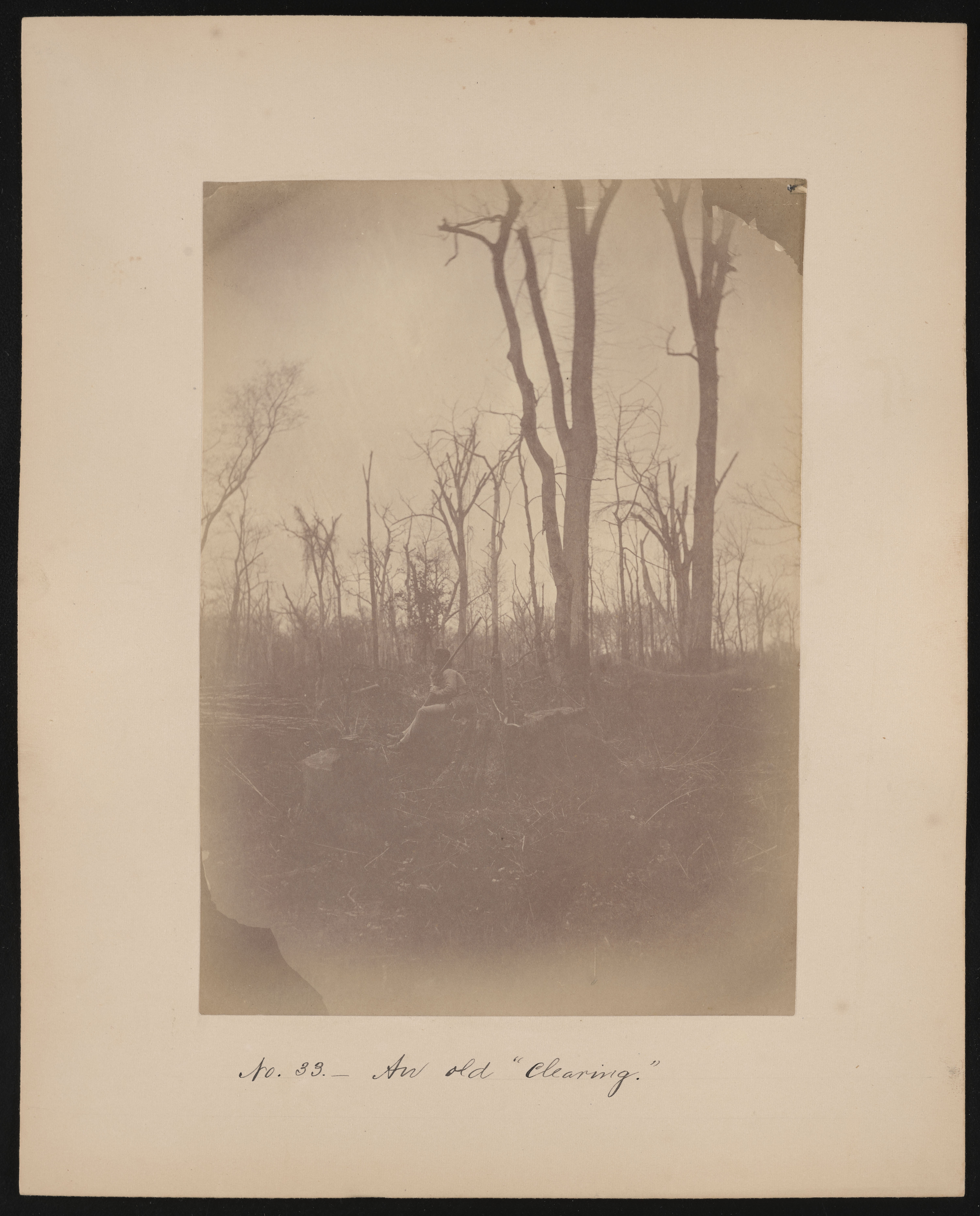 Forest of Mississippi Valley, Clearing