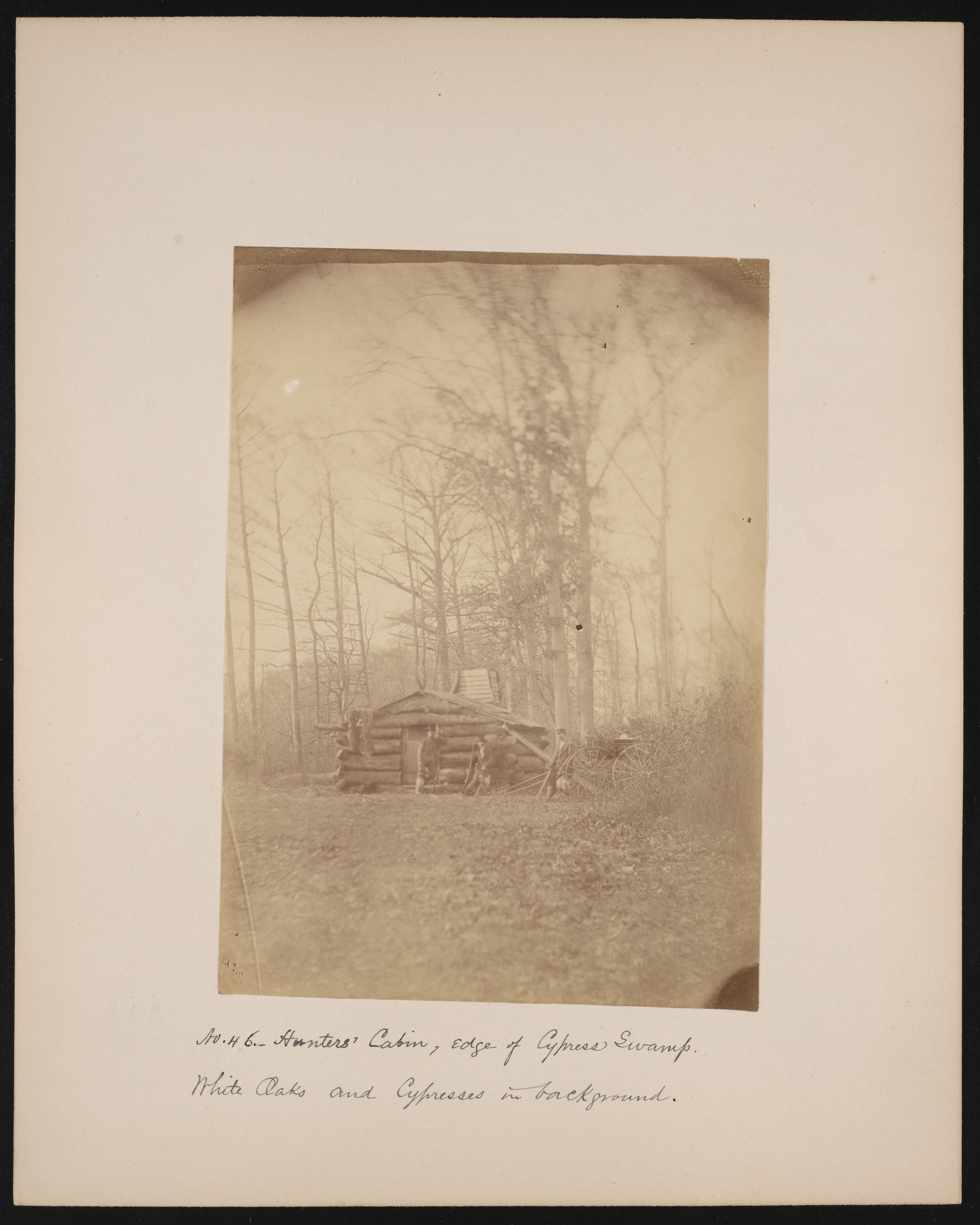 Forest of Mississippi Valley, Hunters' Cabin, Edge of Cypress Swamp