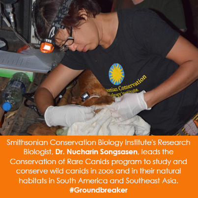 Smithsonian Conservation Biology Institute's Research Biologist, Dr. Nucharin Songsasen, leads the C