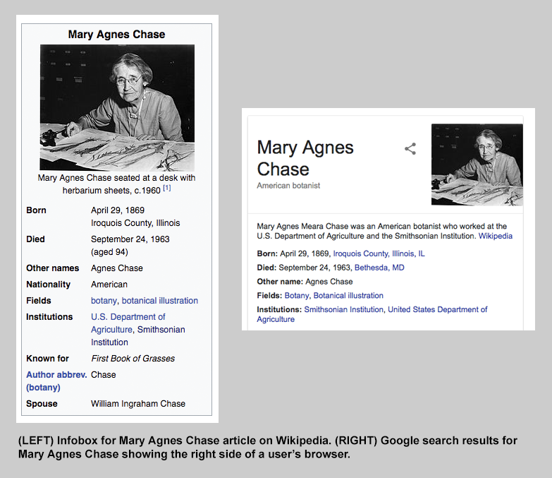 Side by side comparison of Infobox on Wikipedia for Mary Agnes Chase (left) and Google Search result
