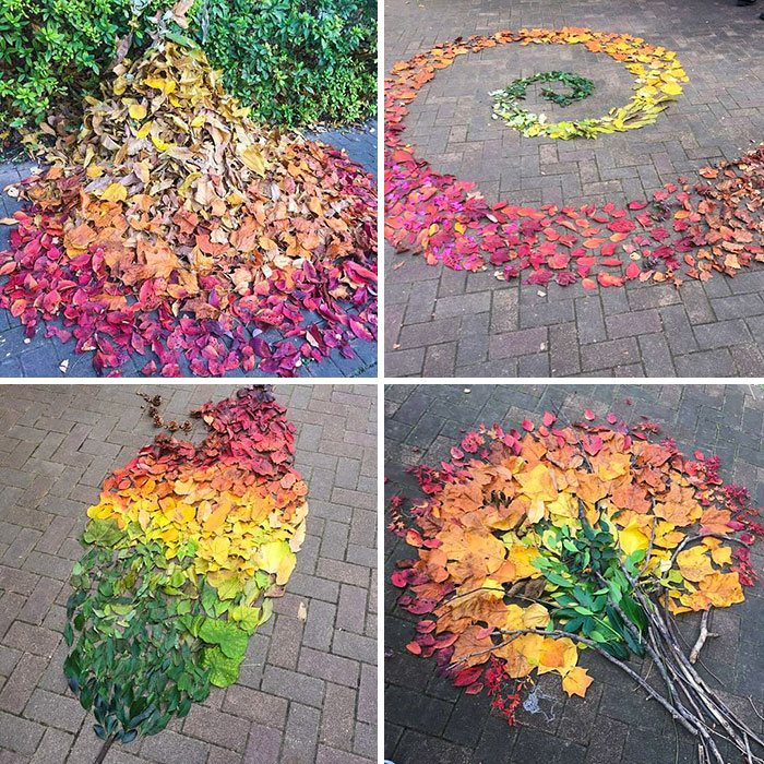 Photo of fallen leaf art, by Saki Kitazumi