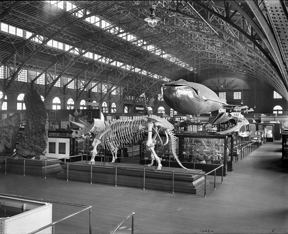 Louisiana Purchase Exposition in Saint Louis, Missouri, 1904.