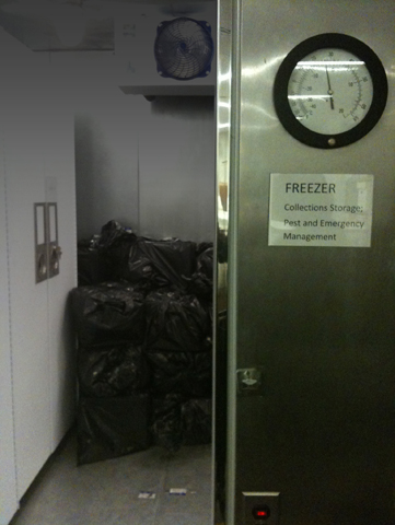 Walk-In Freezer for emergencies, pest management, and collections storage, April 2011, Photo courtes