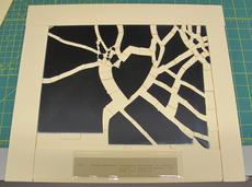 glass plate negative storage