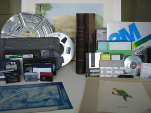 Variety of record formats that are commonly found in archives.