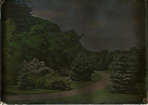 Eagle Rock, 1917, glass autochrome, Garden Club of America Collection, Archives of American Gardens.