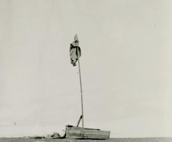 The mast and signal flag raised on Marchena Island by the castaways (detail), Smithsonian Institutio