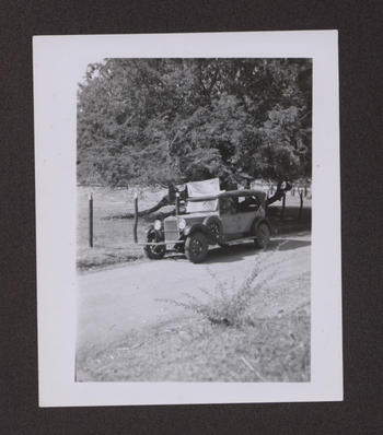 Fiat with collecting net in place, Jamaica, 1937
