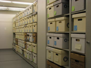 Robbins Papers in collections storage.