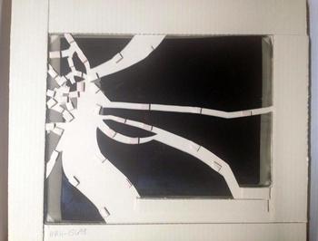 Stabilized broken glass plate negative, 2013