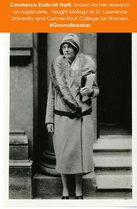 Constance Endicott Hartt