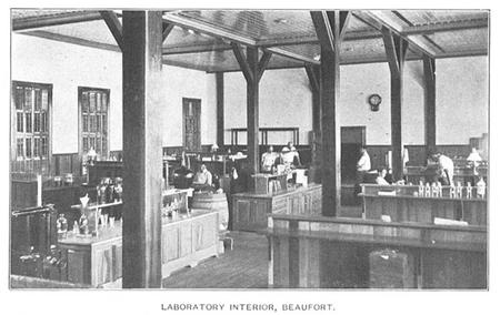 Laboratory Interior, Beaufort, c. 1902, by Unknown photographer.