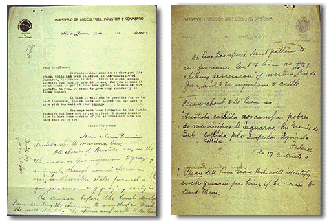 Image of two pages of dark text on light background, some typed and some handwritten
