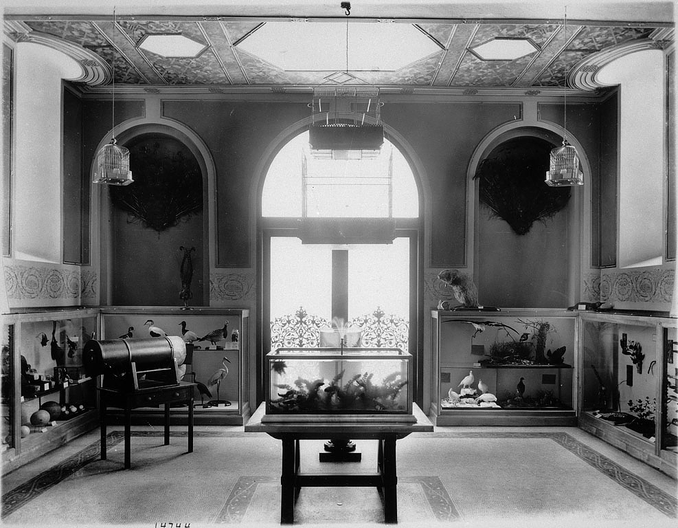 A view of the Children's Room 1901. Smithsonian Institution Archives, Image ID: 14744 or MAH-14744.