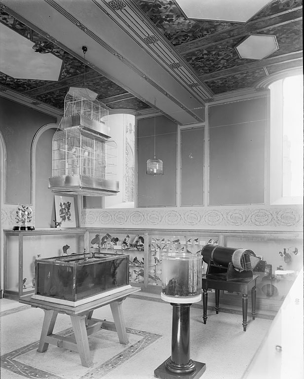 Children's Room in Smithsonian Institution Building, 1901. Smithsonian Institution Archives, Image I