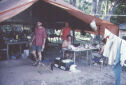 Researchers preparing specimens in the field under a tent during a bird expedition