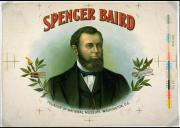 Artist's proof of cigar box cover featuring the image of Spencer Baird