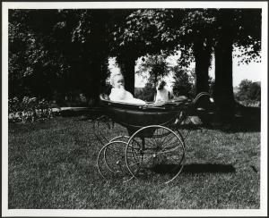 S. Dillon Ripley in pram with dog, c. 1914, photographer unknown, photographic print, Accession 93-1