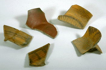 5 earthen-colored potsherds on a white background