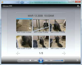 Menu screenshot from the Baby Anteater video from the mapped ISO mounted on a PC for playback. Acces
