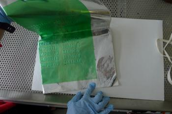 Taking a sample of mold.
