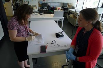 Documenting mold sampling on a chain of custody form.