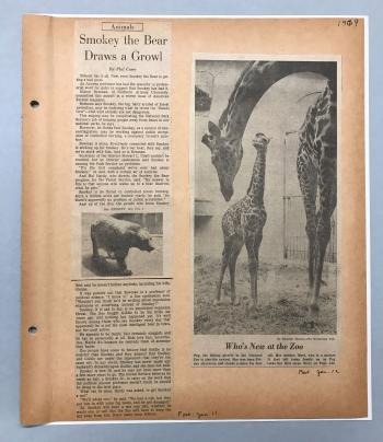 Book page with black and white newspaper clippings.