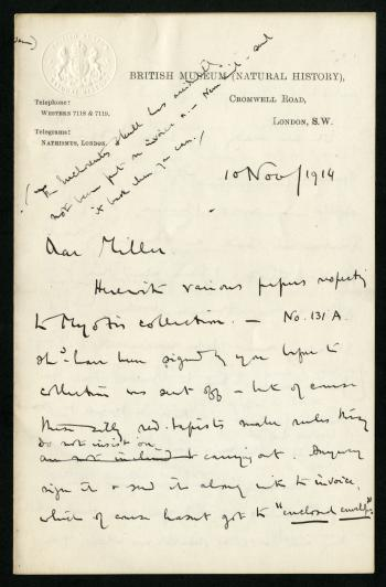 Correspondence from Thomas to Miller, November 10, 1914. Smithsonian Institution Archives, RU00158.